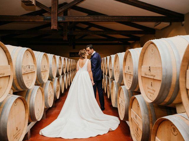 La boda de Javier y Elena en Pesquera De Duero, Valladolid 54