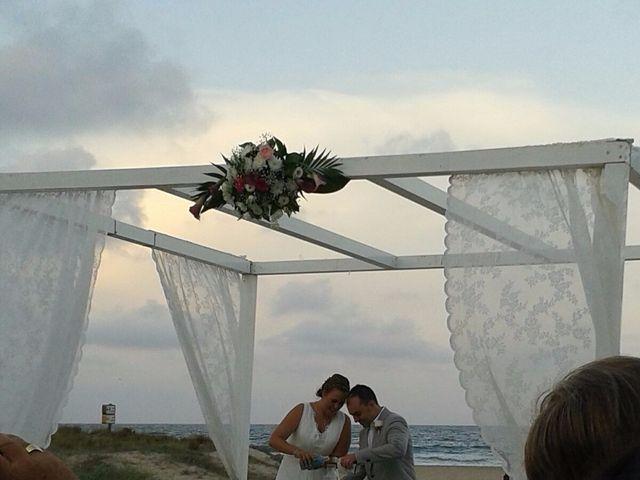 La boda de Fernando  y Silvia en El Saler, Valencia 3