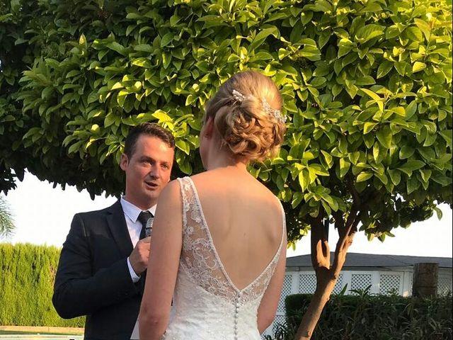 La boda de David y Nathalie en Museros, Valencia 4