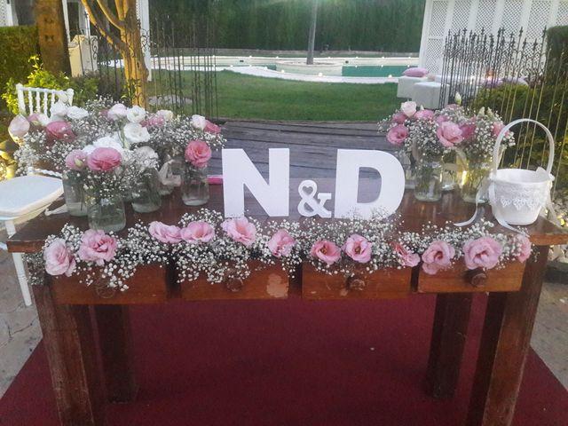 La boda de David y Nathalie en Museros, Valencia 6