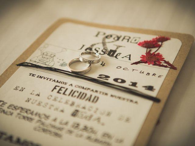 La boda de Pedro y Jessica en Córdoba, Córdoba 2