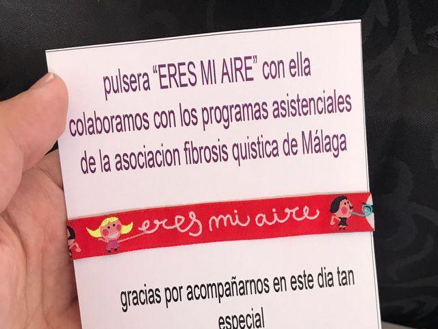 La boda de Noel y Isa en Fuente Piedra, Málaga 14