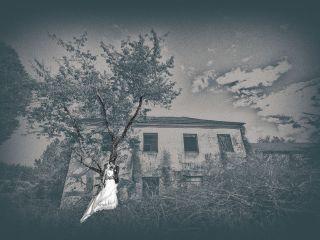 La boda de Jonathan y Sonia en Cabañas Raras, León 27