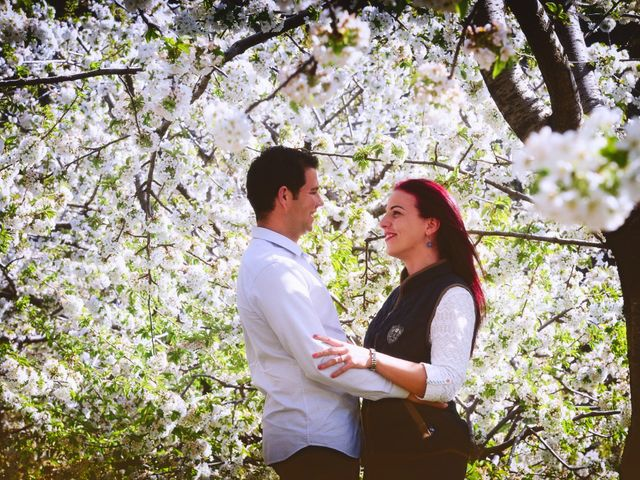 La boda de Ismael y Asun en Plasencia, Cáceres 11