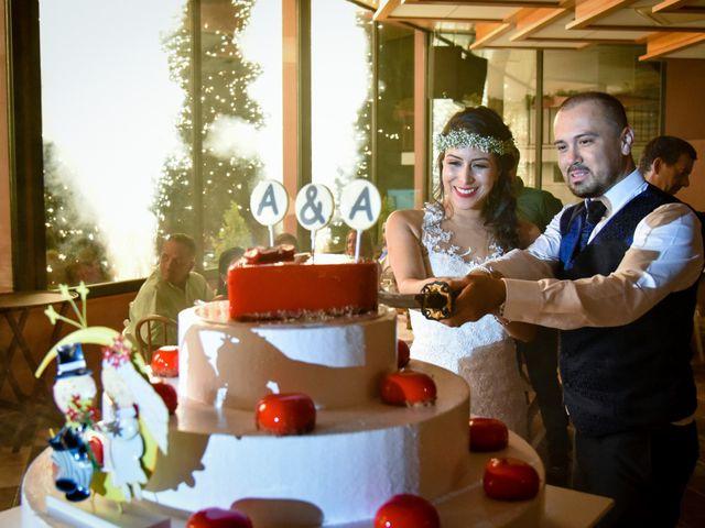 La boda de Andrés y Alejandra en Sant Cebria De Vallalta, Barcelona 14