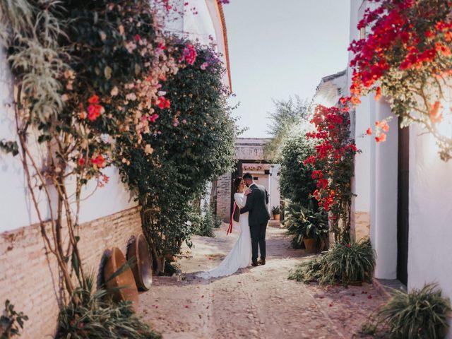 La boda de Israel y Elena en Espartinas, Sevilla 110
