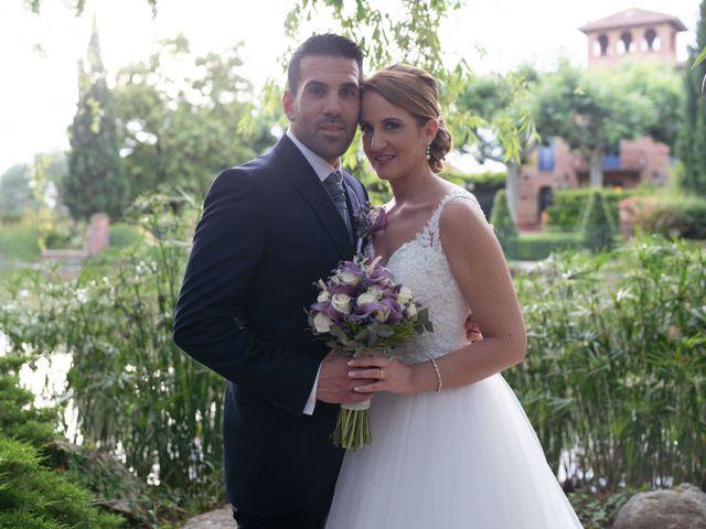 La boda de Iván y Vanessa en Constanti, Tarragona 11
