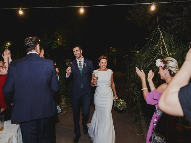 La boda de Cristina y Luis en Cáceres, Cáceres 45