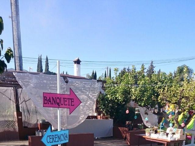 La boda de Manuel  y Andrea  en Mijas Costa, Málaga 12