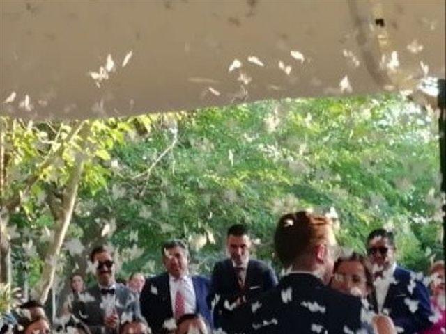 La boda de Emilio  y María en Villarrobledo, Albacete 5