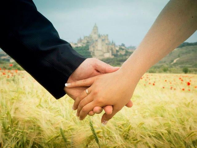 La boda de Alicia y Samuel en Segovia, Segovia 4