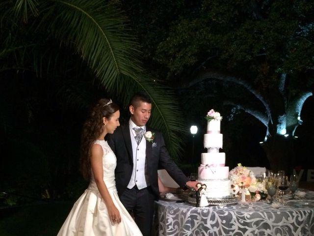 La boda de Ronny y Tamara en Palma De Mallorca, Islas Baleares 67