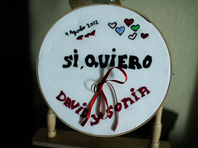 La boda de David y Sonia en La Carolina, Jaén 11