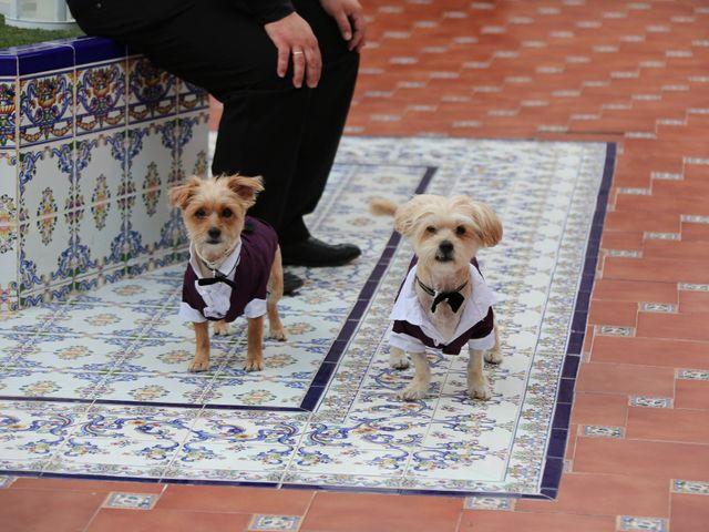 La boda de Adrián y Vanessa en Alacant/alicante, Alicante 21