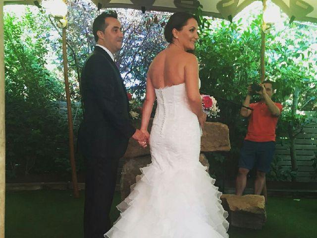 La boda de Sergio  y Olga  en Palau De Plegamans, Barcelona 5