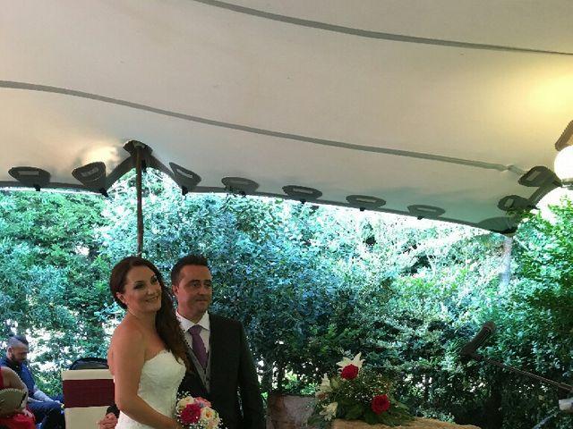 La boda de Sergio  y Olga  en Palau De Plegamans, Barcelona 6