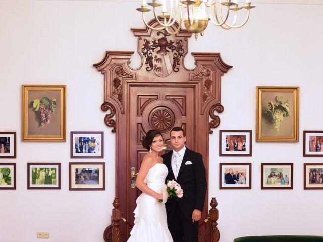 La boda de Dani y Rocio en Jerez De La Frontera, Cádiz 6