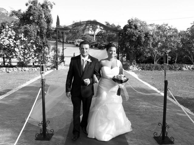 La boda de Andres y Rosi en Alora, Málaga 13