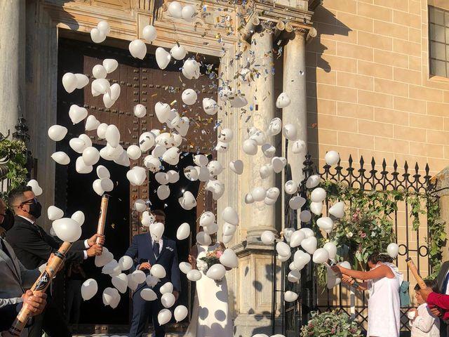 La boda de Alberto y Lidia  en Badajoz, Badajoz 4