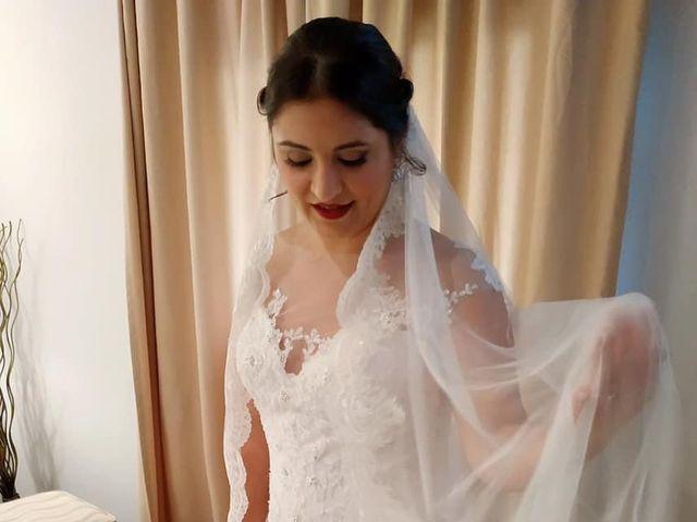 La boda de Fran  y Crina en Alora, Málaga 2