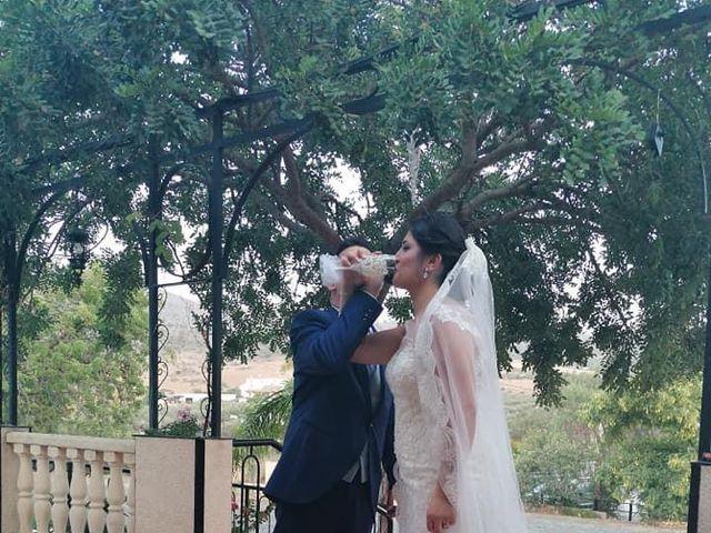 La boda de Fran  y Crina en Alora, Málaga 4