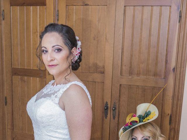La boda de Julián  y Noelia en Piedrabuena, Ciudad Real 11