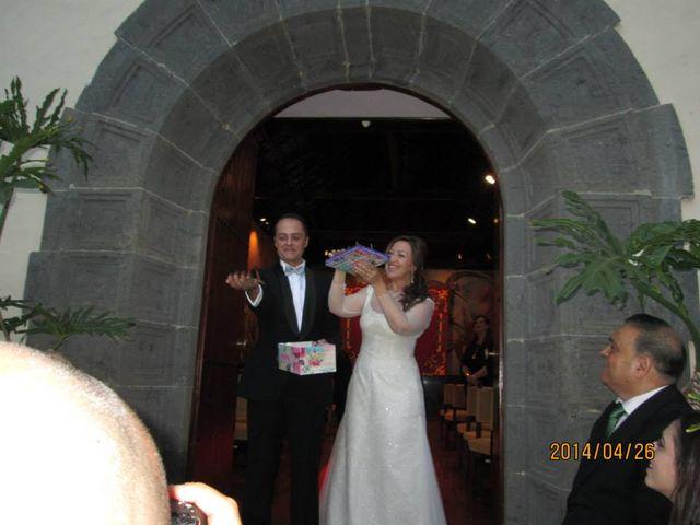 La boda de Alicia y Armado en Las Palmas, Santa Cruz de Tenerife 17