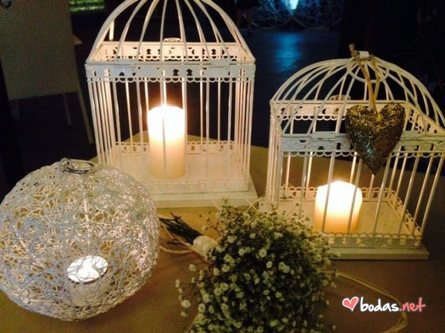 La boda de Alicia y Armado en Las Palmas, Santa Cruz de Tenerife 2