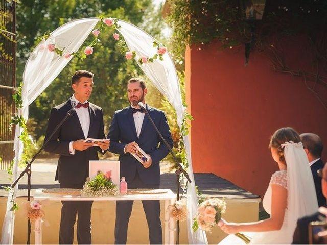 La boda de David y Belén en Jerez De La Frontera, Cádiz 15