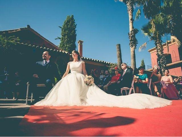 La boda de David y Belén en Jerez De La Frontera, Cádiz 18