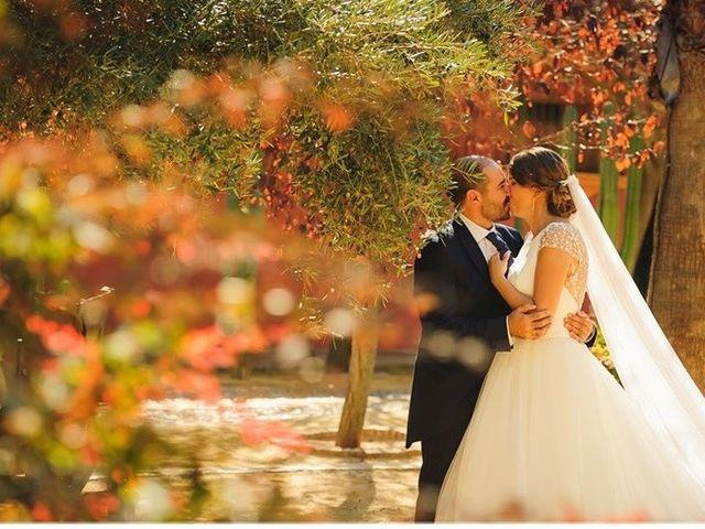 La boda de David y Belén en Jerez De La Frontera, Cádiz 30