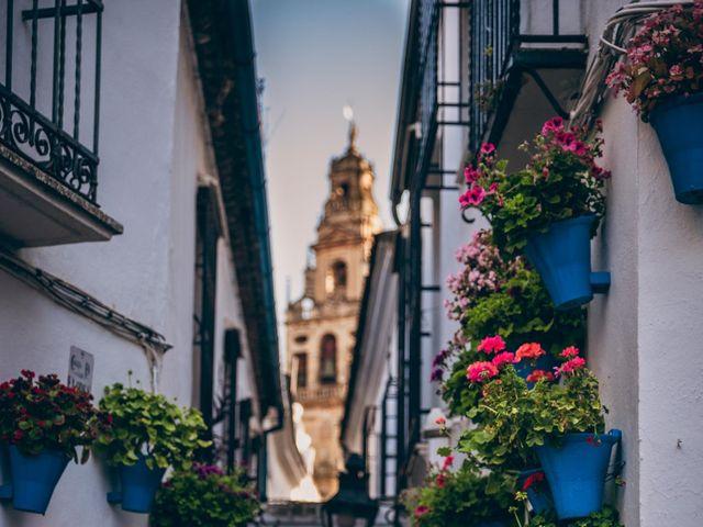 La boda de David y Estíbaliz en Córdoba, Córdoba 21