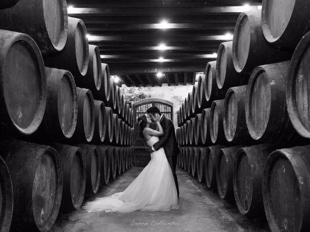 La boda de Miguel Ángel y Gema en Jerez De La Frontera, Cádiz 18