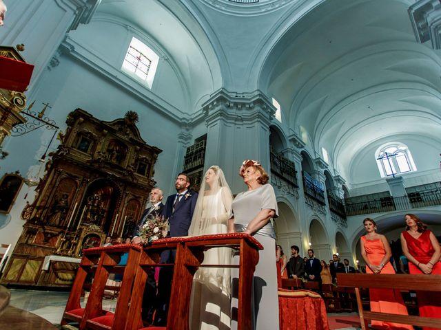 La boda de Álvaro y Ana Laura en Villanueva Del Ariscal, Sevilla 15