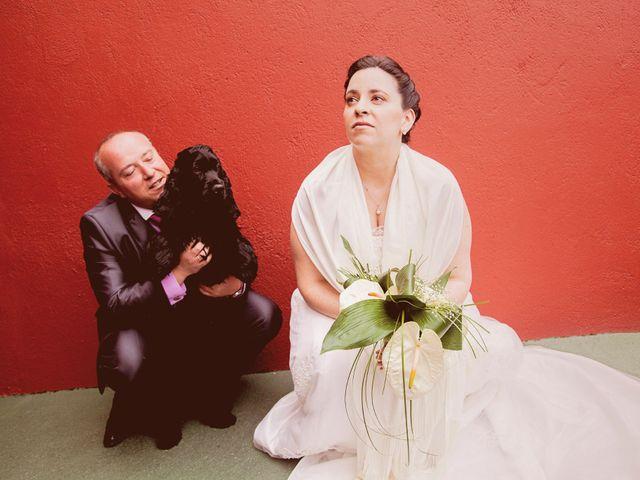 La boda de Carlos y Patricia en Pantoja, Toledo 15