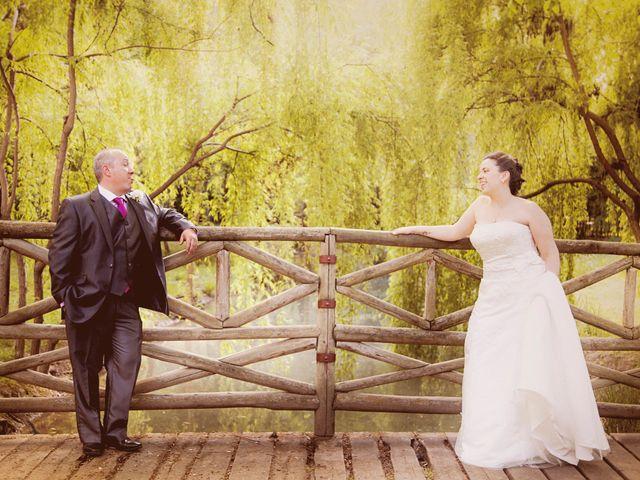 La boda de Carlos y Patricia en Pantoja, Toledo 28