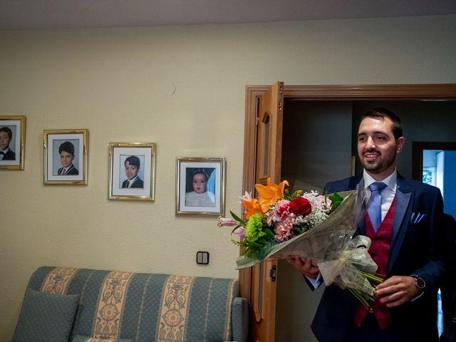 La boda de Adrián y Noelia en Alalpardo, Madrid 15