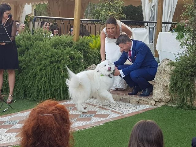 La boda de Hector y Sandra en Alora, Málaga 3
