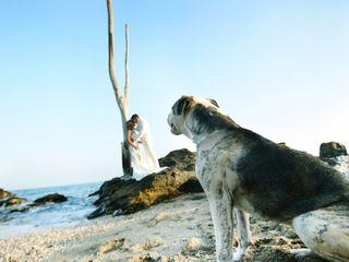 La boda de Davinia y Alejandro