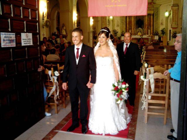 La boda de Alba y Alberto en San Pedro Alcantara, Málaga 1