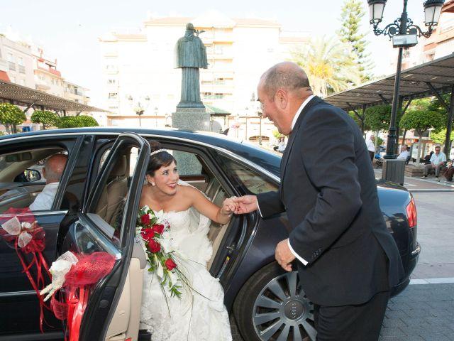 La boda de Alba y Alberto en San Pedro Alcantara, Málaga 13