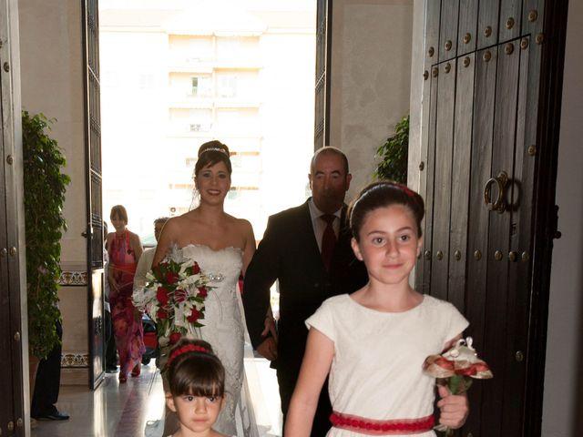La boda de Alba y Alberto en San Pedro Alcantara, Málaga 14