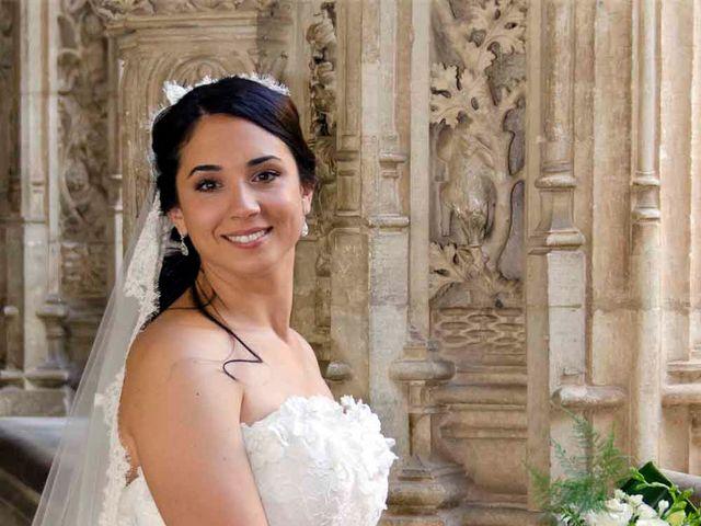 La boda de David y Estefanía en Burujón, Toledo 15
