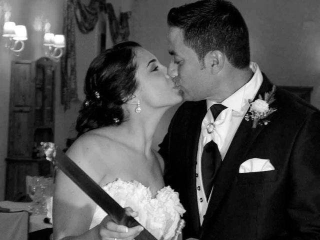 La boda de David y Estefanía en Burujón, Toledo 20