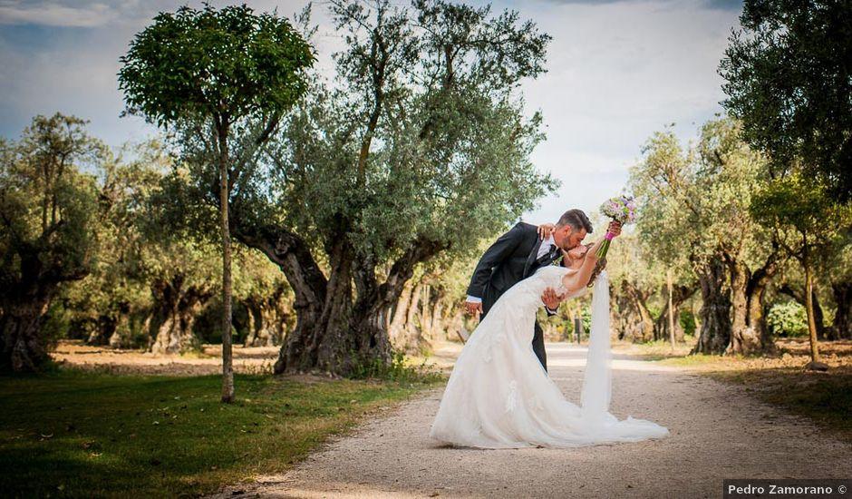 La boda de Rodrigo y Cristina en Griñon, Madrid