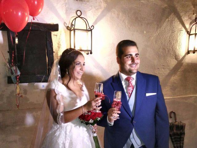 La boda de Jose Luis y Noelia en Carretera De Brenes, Sevilla 1