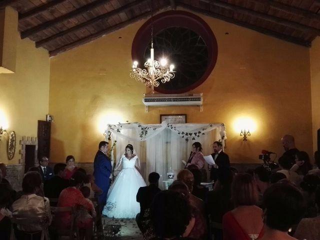 La boda de Jose Luis y Noelia en Carretera De Brenes, Sevilla 6
