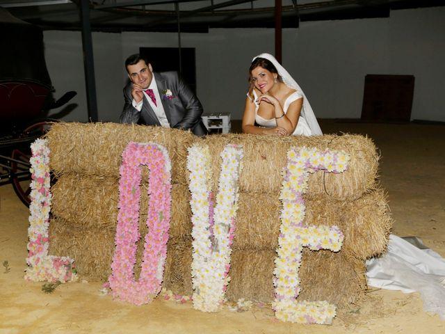 La boda de Paco y Carmen en Almaden De La Plata, Sevilla 29