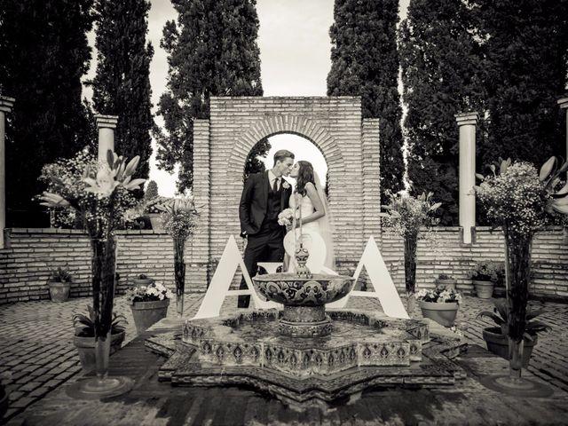 La boda de Austin y Andrea en Sanlucar La Mayor, Sevilla 28