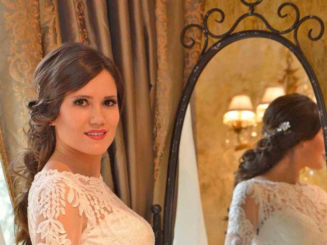 La boda de Raúl y Alessandra en Toledo, Toledo 10